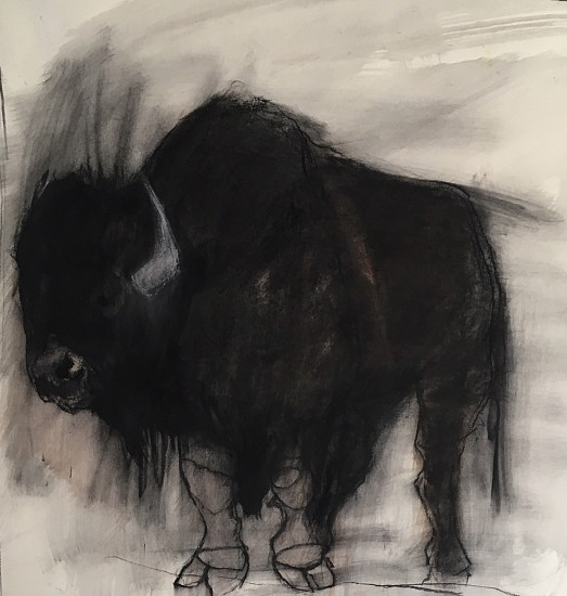 Helen Durant, Night Vision 2018, Charcoal on Paper