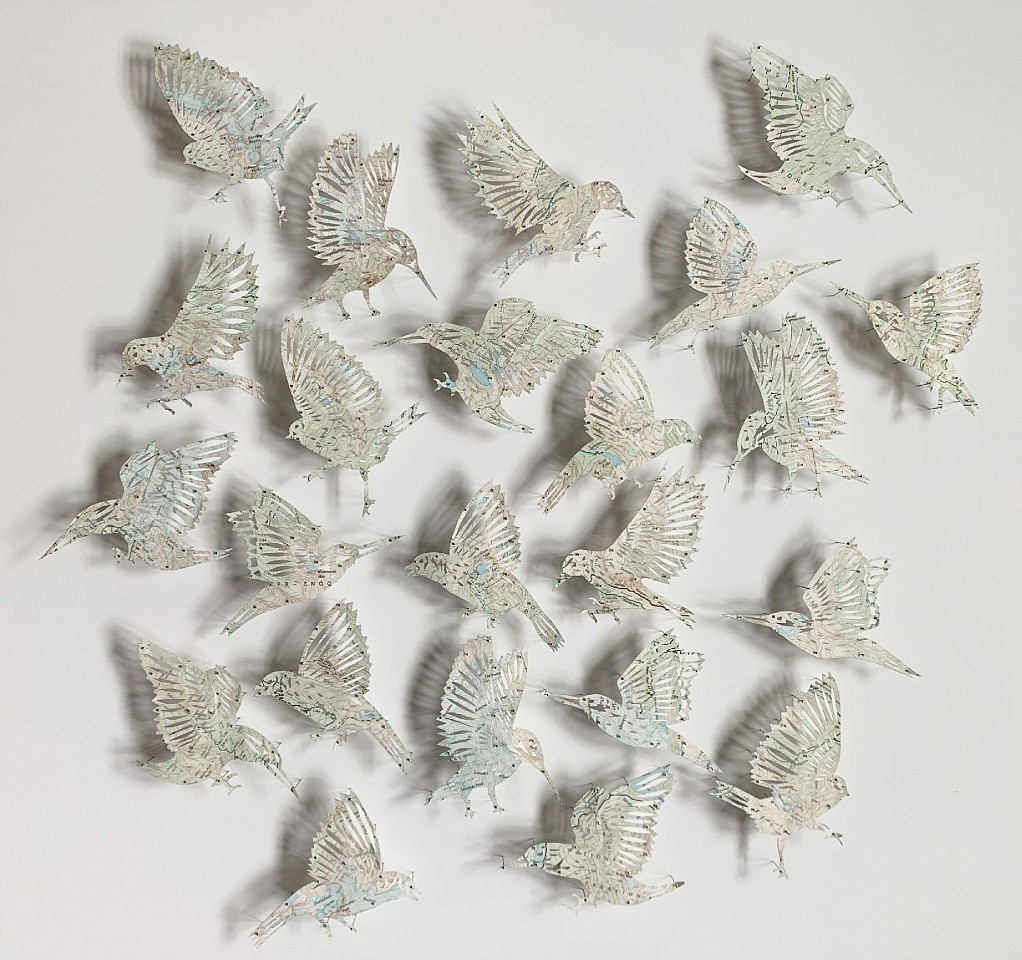 Claire Brewster, Ghost Birds 2020, Topographical Map